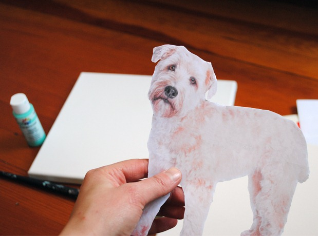 Craft-Pet-Art
