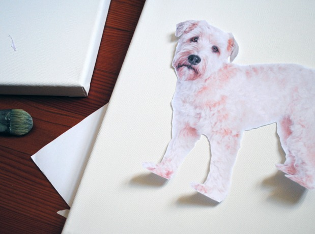 Pet-Art-Craft