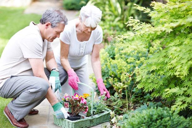 Garden bonding