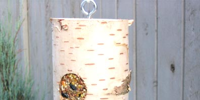 Bird Feeder Log