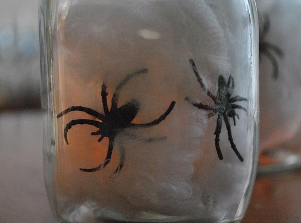 Spider Jar 4