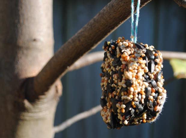 Birdfeeder-hanging