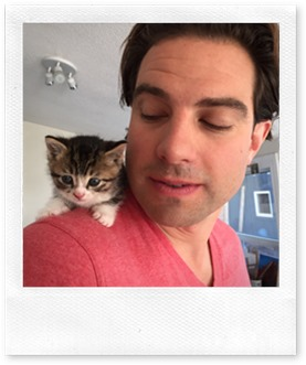 Scott-McGillivray-Cat-Kitten-Income-Property-Set-2