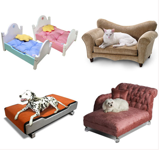 Question Of The Week Is Designer Pet Furniture Over The Top