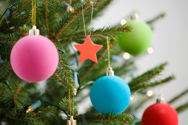 Are Real Christmas Trees Better for the Environment?