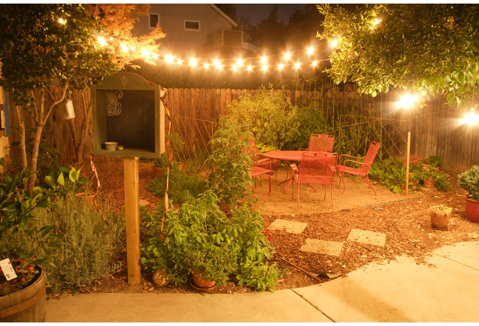 Backyard Twinkle Lights s