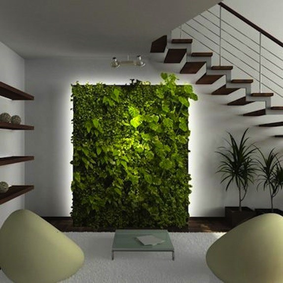 10 of the best ways to use plants in a basement