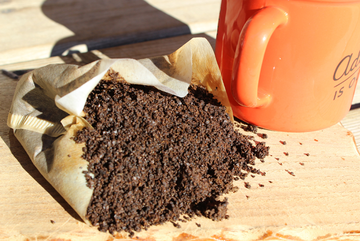 Gross Ingredients That Are Surprisingly Great For Your Compost