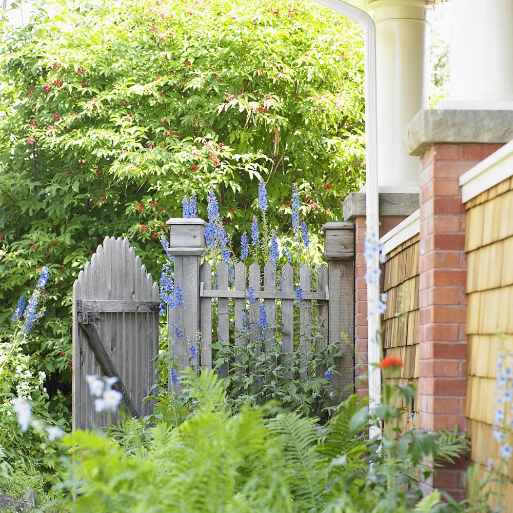 Hgtv Garden Design Ideas: 7 Creative Ways To Landscape Your Yard For Optimal Privacy