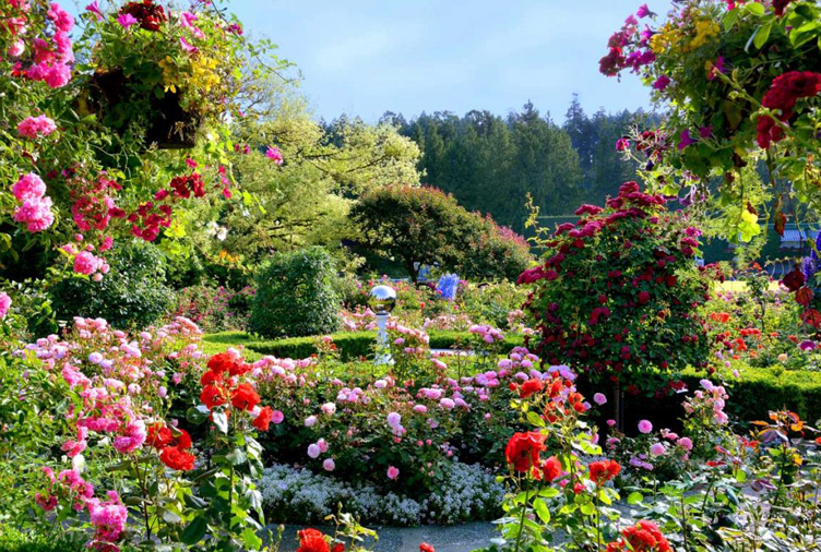 Tour 9 of Canada's Most Spectacular Public Gardens