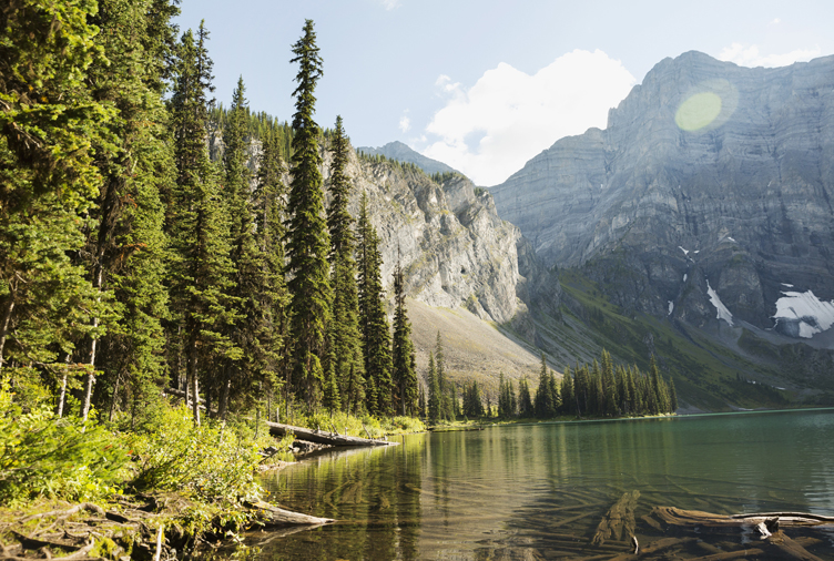 10 Reasons We Should All Move to the Canadian Countryside