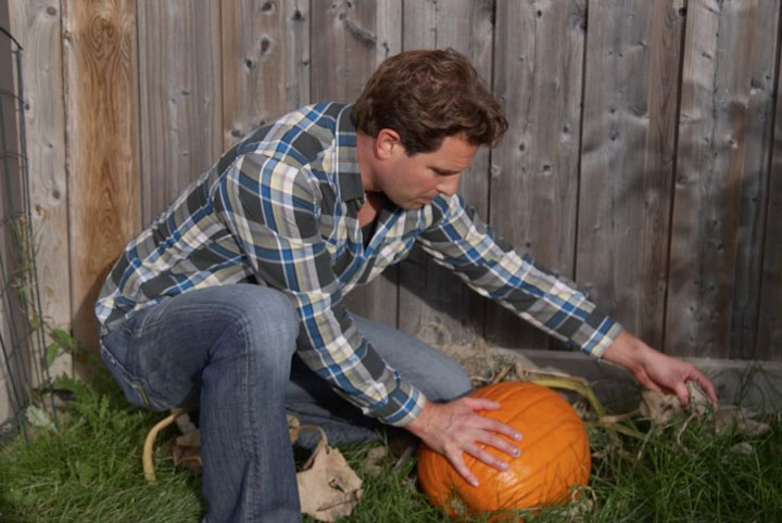 How to prep your vegetable bed for winter scott for How much is scott mcgillivray house